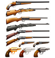 Rifles and pistols vector image
