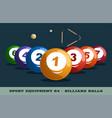 billiard balls icon game equipment professional vector image
