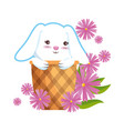 cute rabbit in basket with flowers vector image