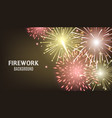 dark firework background with realistic red and vector image vector image