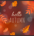 hello autumn poster vector image vector image