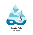 south pole flat vector image