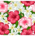 Seamless pattern with tropical flowers hibiscus vector image vector image