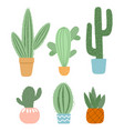 set cute cactus and succulents in pots on white vector image