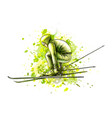abstract biathlete from a splash watercolor vector image vector image