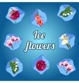 Beautiful flowers frozen in ice cubes vector image