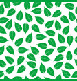 green leaves on white background vector image