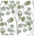 seamless pattern with hand drawn eucalyptys vector image vector image