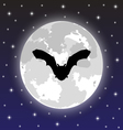 silhouette bat on background full moon vector image vector image