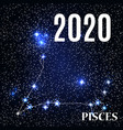 symbol pisces zodiac sign with new year and vector image vector image
