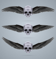 Three metal chrome skulls with two wings vector image