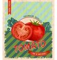 Tomato retro poster vector image vector image