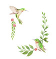 watercolor card green leaves hummingbird vector image vector image