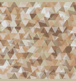 abstract background with geometry earth tone vector image vector image