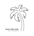 black palm tree thin line icon vector image vector image