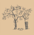 cocoa tree with man character farmer hand vector image