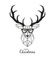 hipster deer with glasses vector image vector image