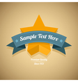 Retro label with gold star vector image vector image