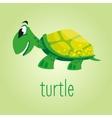 Beautiful cartoon turtle vector image