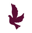 dove flying isolated icon vector image vector image