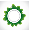 green round leaf border vector image vector image