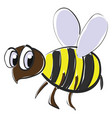 honeybee with large eyes or color vector image vector image