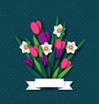 paper cut spring flowers tulip and narcissus vector image