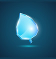realistic leaf of glass vector image