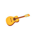 acoustic guitar string instruments musical vector image vector image