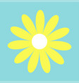 camomile icon yellow daisy chamomile cute big vector image