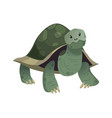 Cartoon cute turtle standing smiling happy