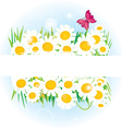 Daisy band with space for copy vector image vector image
