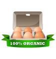 Fresh eggs in box vector image