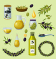 olives products cartoon icons set vector image vector image