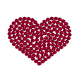 Red heart with roses vector image vector image