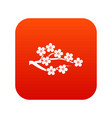 sakura icon digital red vector image