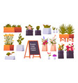 flower shop set potted plants and bonsai isolated vector image