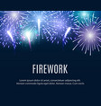 night sky with glowing and shining firework lights vector image vector image