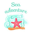 sea adventure starfish deep down sea seastar vector image vector image