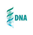 sign in shape a spiral dna vector image