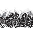 tropical plants monochrome pattern vector image vector image