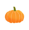 autumn round-shaped pumpkin with peduncle fall vector image