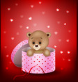 cartoon small bear in a gift box vector image vector image