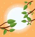 cartoon sunset flat trees leaf and sun vector image vector image
