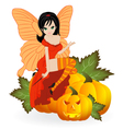 Fairy on a pumpkin vector image vector image