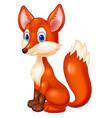 fox cartoon vector image vector image