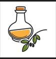 glass bottle of virgin olive oil near brunch on vector image