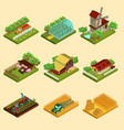 isometric farm set vector image vector image