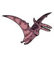 pterodactyl dangerous predator dino flying vector image