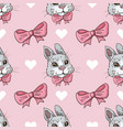 seamless pattern with rabbits bows and vector image
